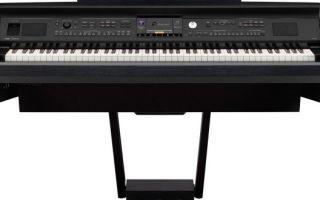Цифровые фортепиано виды, преимущества и критерии выбора