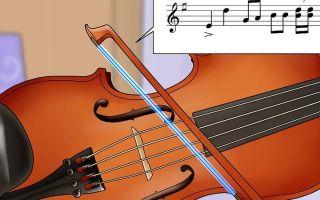 Кое-что об игре на скрипке для начинающих история, устройство инструмента, принципы игры