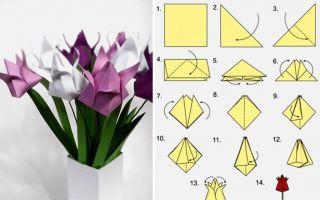 Как сделать тюльпаны из бумаги мастер-класс