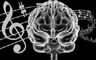 Влияние музыки на психику человека: рок, поп, джаз и классика – что, когда и для чего слушать?