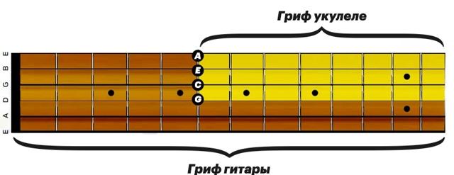 Укулеле - аккорды, основы игры, история. Маленькая гитара с большими возможностями