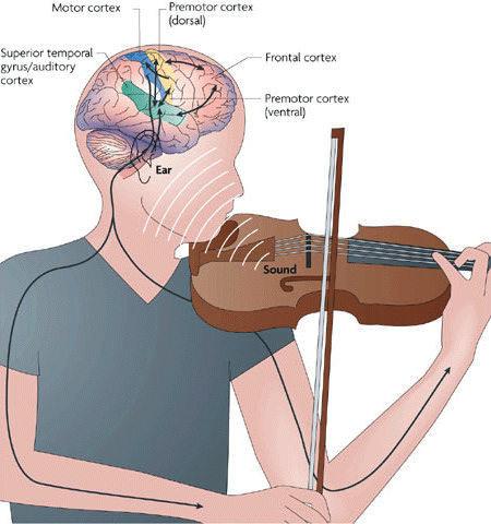 Влияние музыки на воду: облагораживающее и разрушающее воздействие звуков
